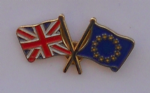 Great Britain and Europe EU Friendship Flag Pin Badge